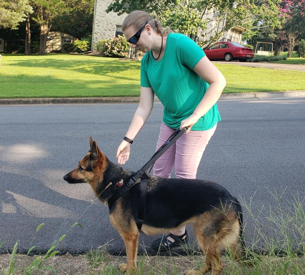 Anneliese and Greta work down a neighborhood street without sidewalk.